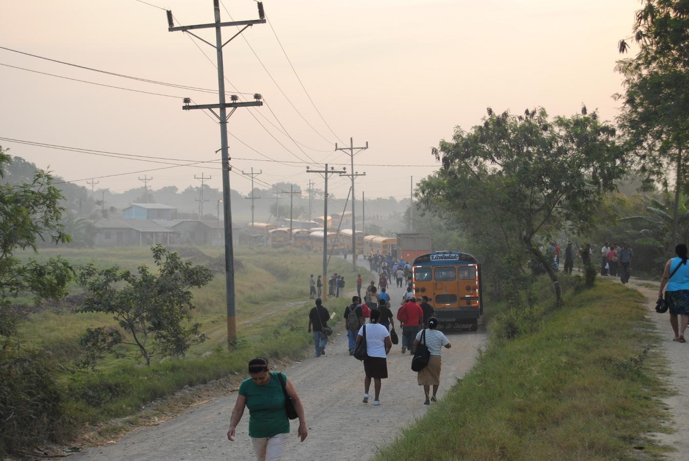 Paran producción de bananera Chiquita Brand y detienen camiones de caña del Ingenio de la Coca Cola en La Lima