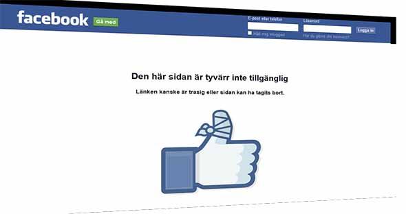 Borro Facebook Hilda